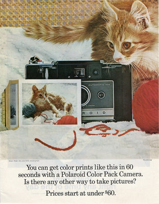Vintage 1966 Polaroid Color Pack Camera Ad