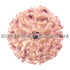 products/10Mukhi10-00117-60mmNEWBWEB.jpg