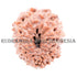 products/13MukhiRudraksha_13-007B_WEB.jpg