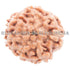 products/7MukhiRudraksha_7-005B_WEB.jpg