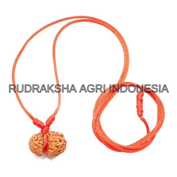 GARBH GAURI RUDRAKSHA RED THREAD