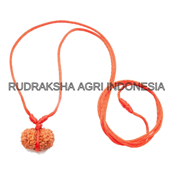 GAURI SHANKAR RUDRAKSHA RED THREAD