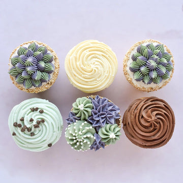 Crave Cupcakes - Succulent Cupcake Pack