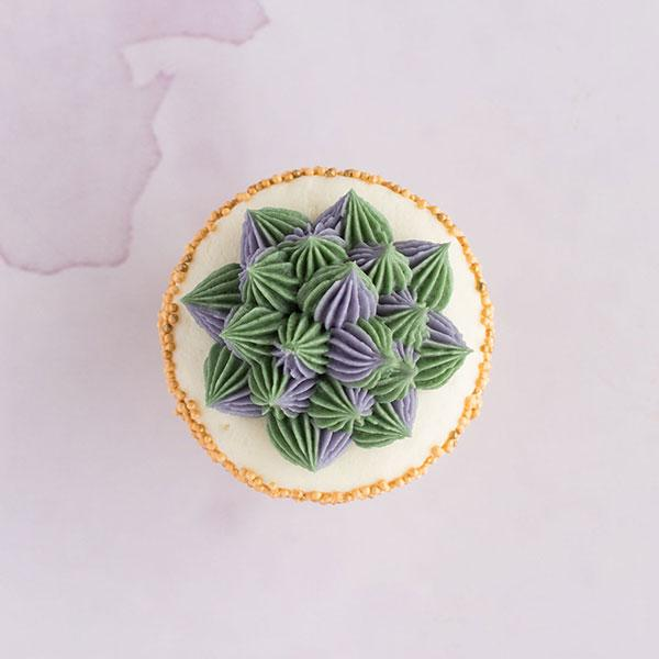 Succulent Specialty Cupcakes