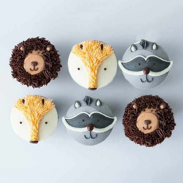 Woodland Friends Cupcake Six Pack