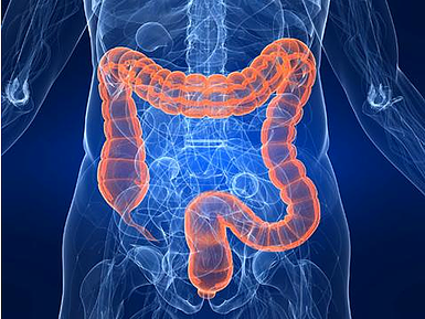 Why It's Important To Clean Your Colon