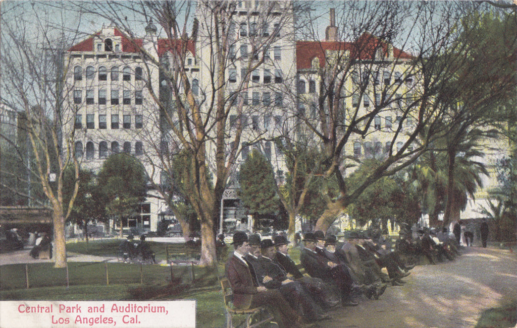 Central Park and Auditorium- 1900s Antique Postcard- L.A. Gentlemen- Los Angeles, California- Newman Co.- Unused