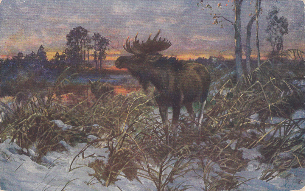 Moose at Sunset- 1900s Antique Postcard- Sunset Painting- H. W. S.- Artist Signed- Theochrom- Unused