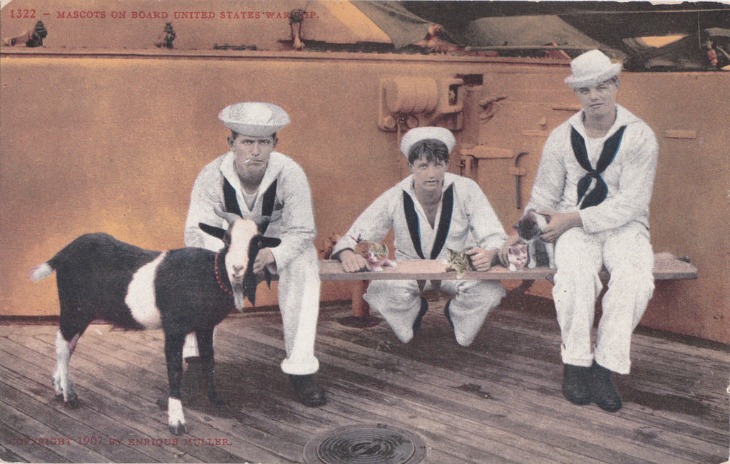Battleship Mascots- 1900s Antique Postcard- US Navy Warship- American Sailors- Kitttens and Goat- Unused