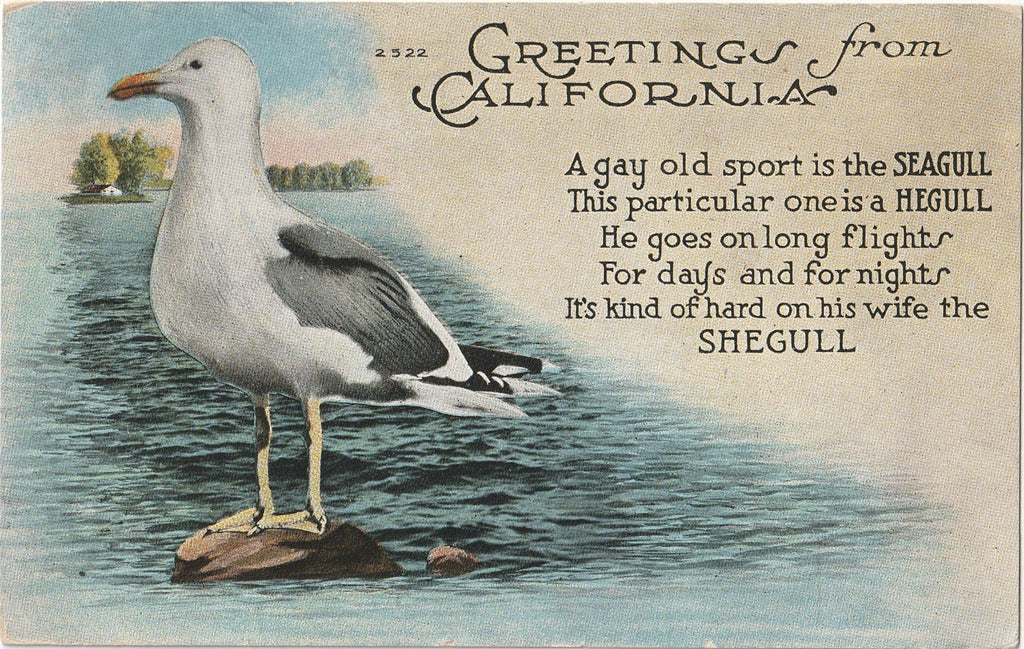 A Gay Old Spirit Is the Seagull - Greetings From California - Postcard, c. 1920s