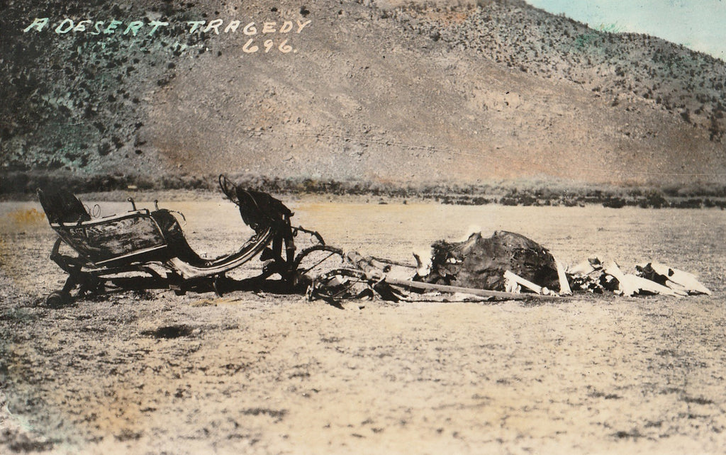 A Desert Tragedy RPPC Close Up