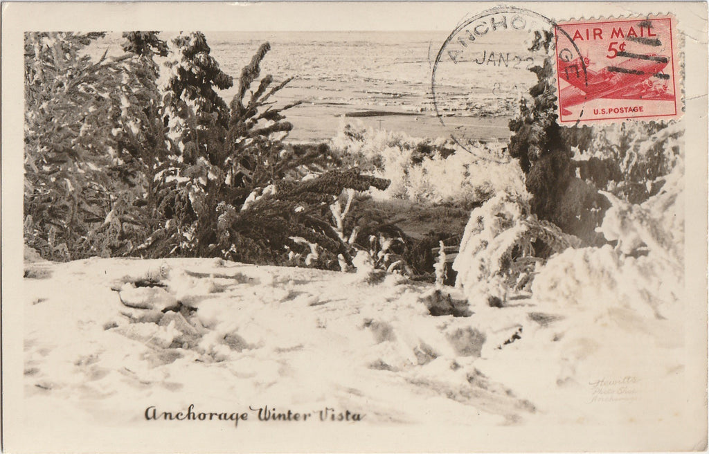 Anchorage Alaska Winter Vista RPPC Photo Postcard
