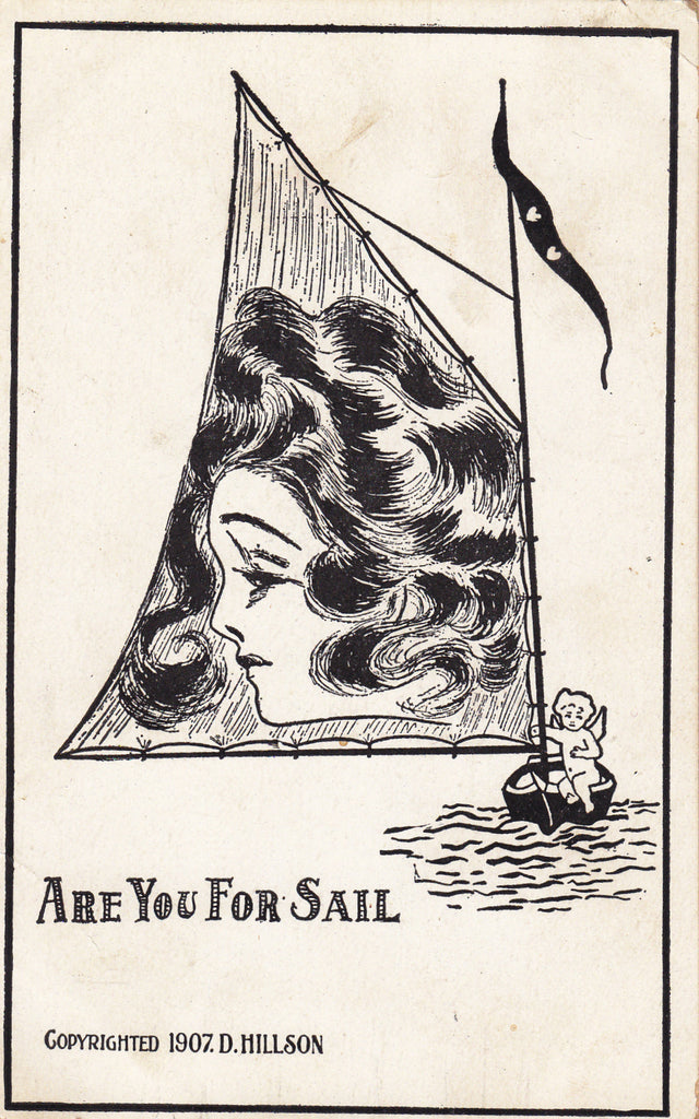 Are You For Sail D. Hillson Postcard