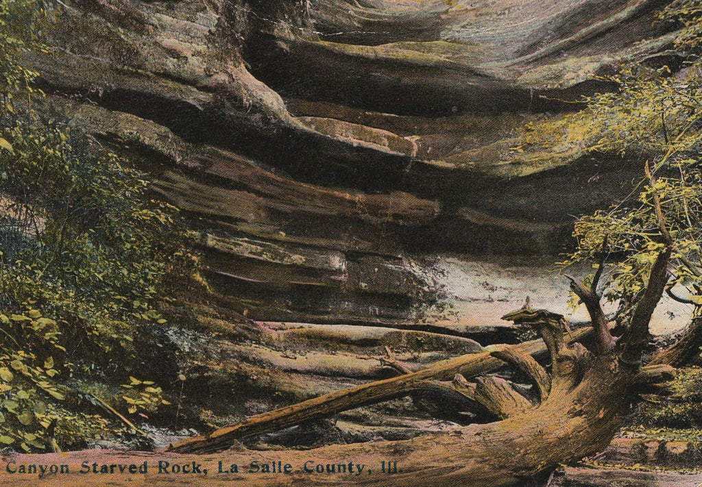 Aurora Canyon  Starved Rock State Park Antique Postcard Close Up