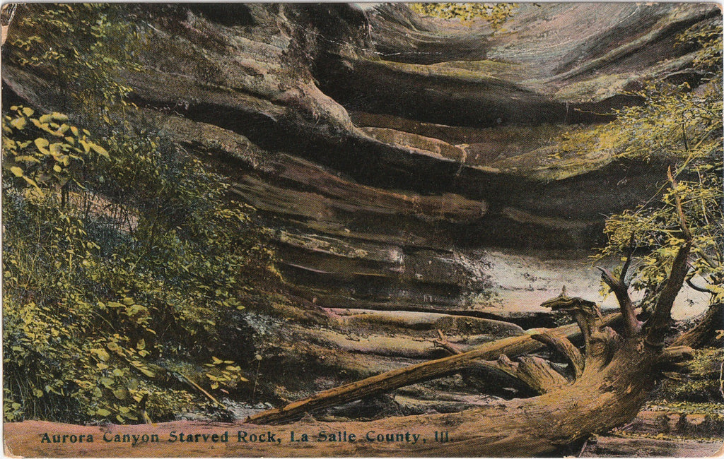 Aurora Canyon  Starved Rock State Park Antique Postcard
