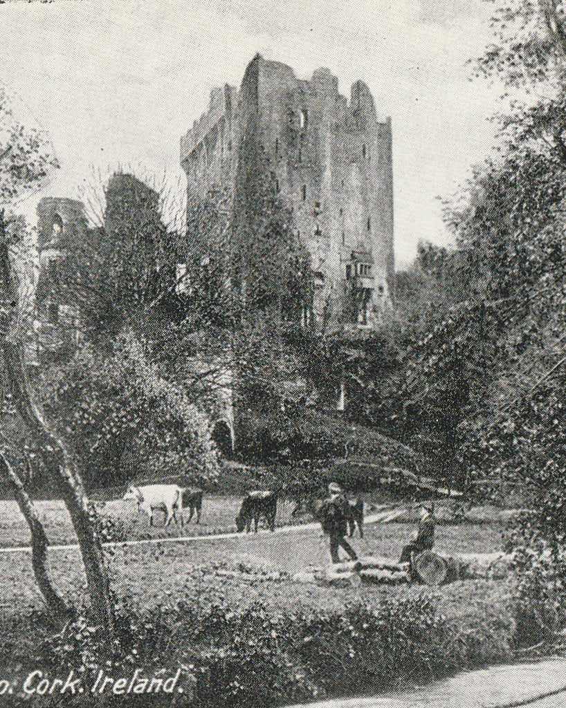 Blarney Castle Cork Ireland Vintage Postcard Close Up