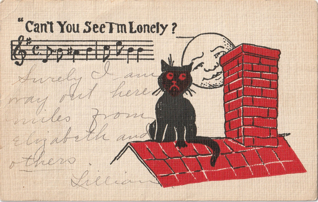 Can't You See I'm Lonely Black Cat Postcard