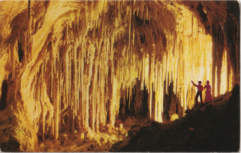 Carlsbad Caverns National Park New Mexico Postcard
