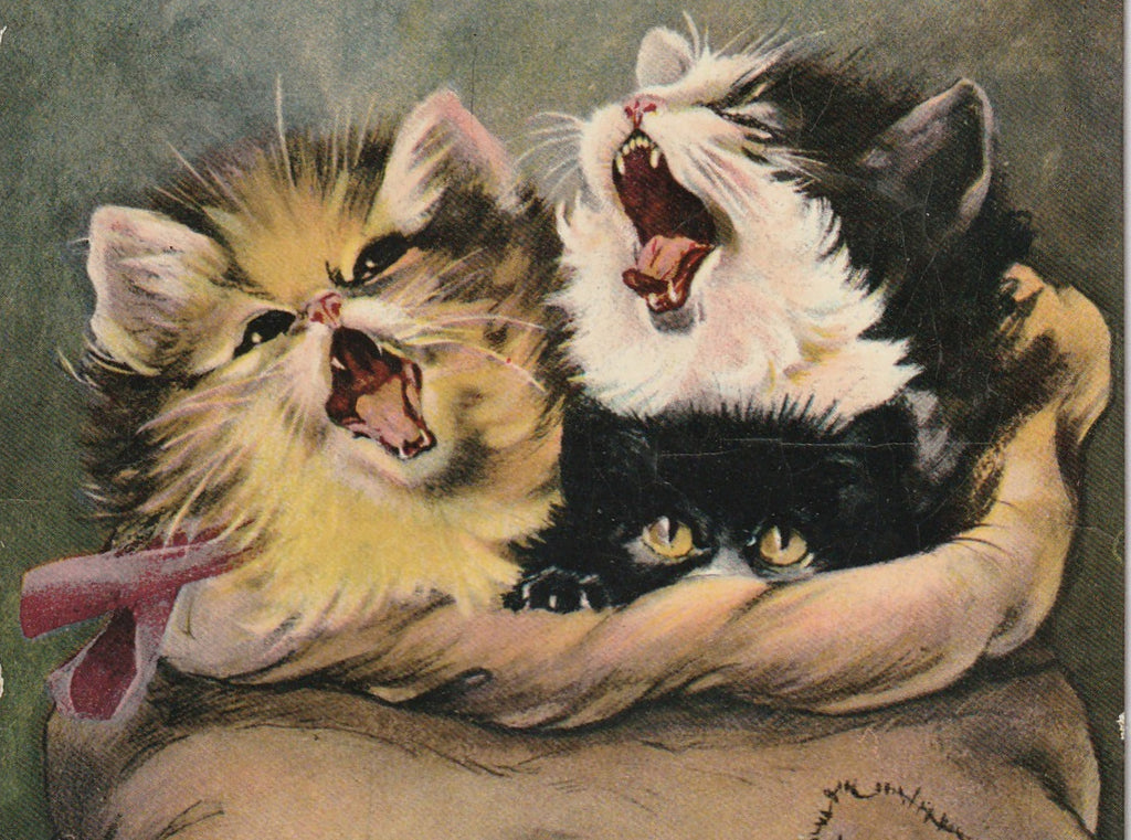 Cats in the Bag Antique Postcard Close Up