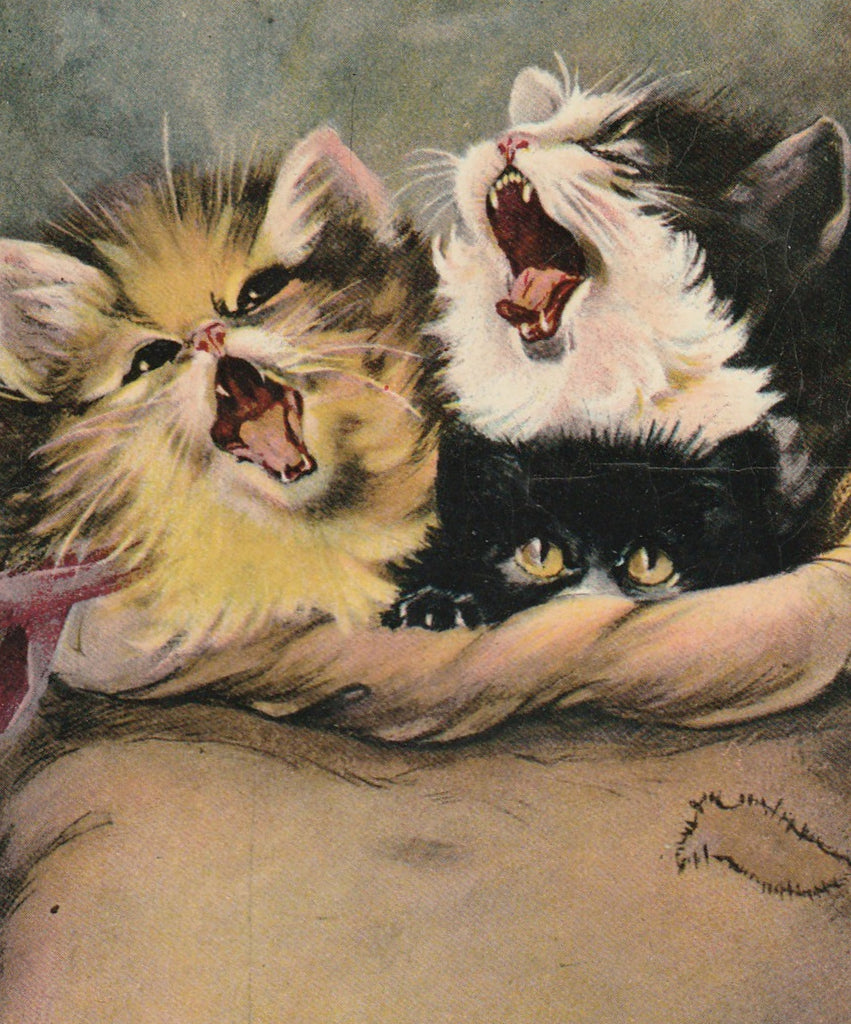 Cats in the Bag Antique Postcard Close Up 2