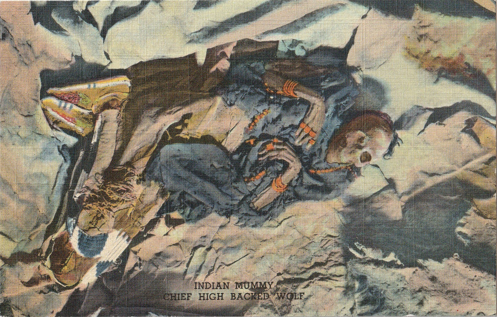 Chief High Backed Wolf Indian Mummy Postcard