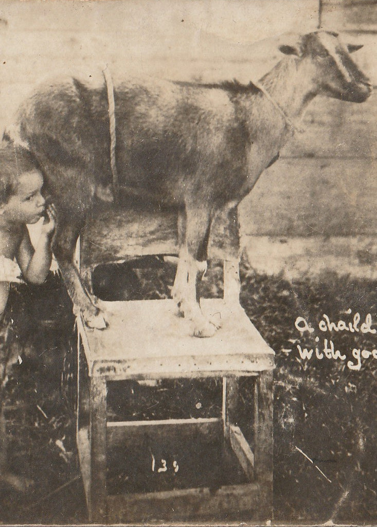 Child Being Nursed By Goat  RPPC Close Up 3
