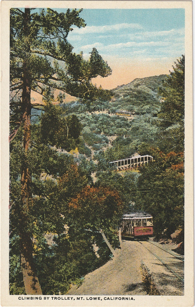 Climbing By Trolley Mt. Lowe Postcard