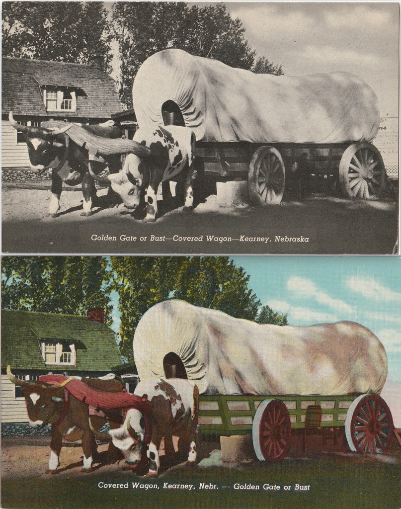 Golden Gate or Bust Covered Wagon Kearney NE Postcard SET