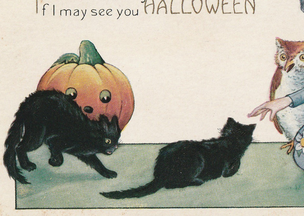 Dame Fortune's Black Cats Halloween Postcard Close Up 2