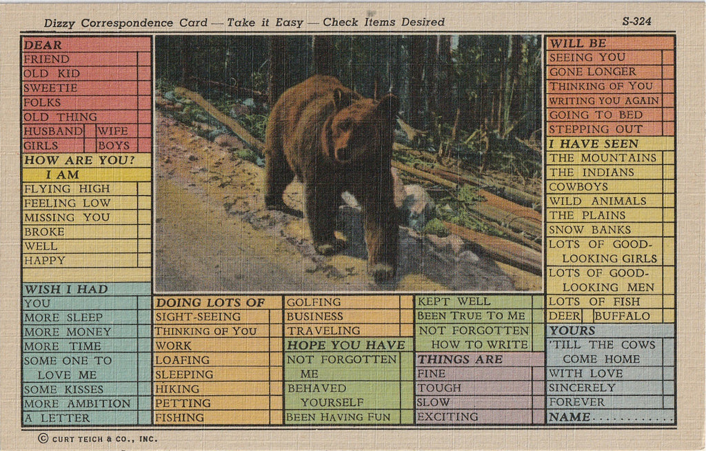 Dizzy Correspondence Card - Check Items Desired - Bear Postcard, c. 1940s