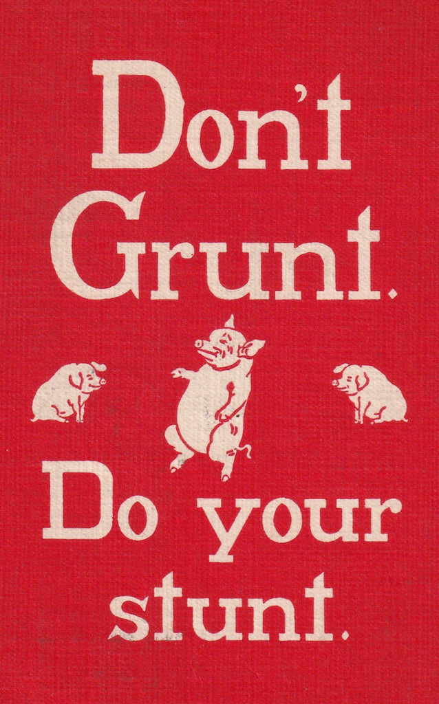 Don't Grunt Do Your Stunt Sheahan Motto Postcard Close Up