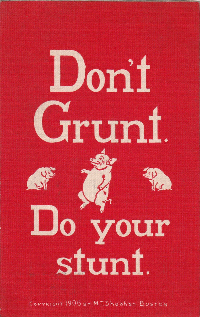 Don't Grunt Do Your Stunt Sheahan Motto Postcard