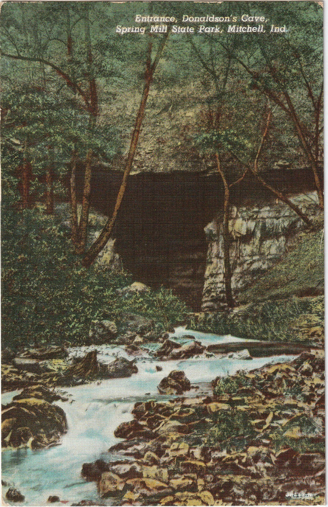 Donaldson's Cave Spring Mill State Park Mitchell IN Postcard