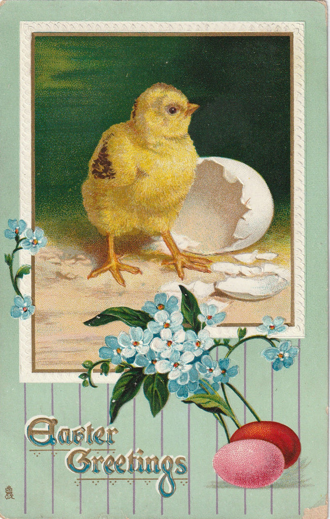 Easter Chick Hatchling Antique Postcard