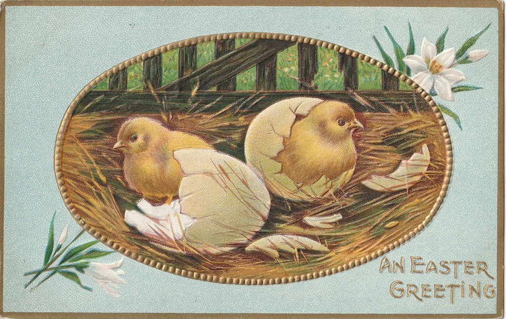 Easter Chicks in Nest Antique Postcard