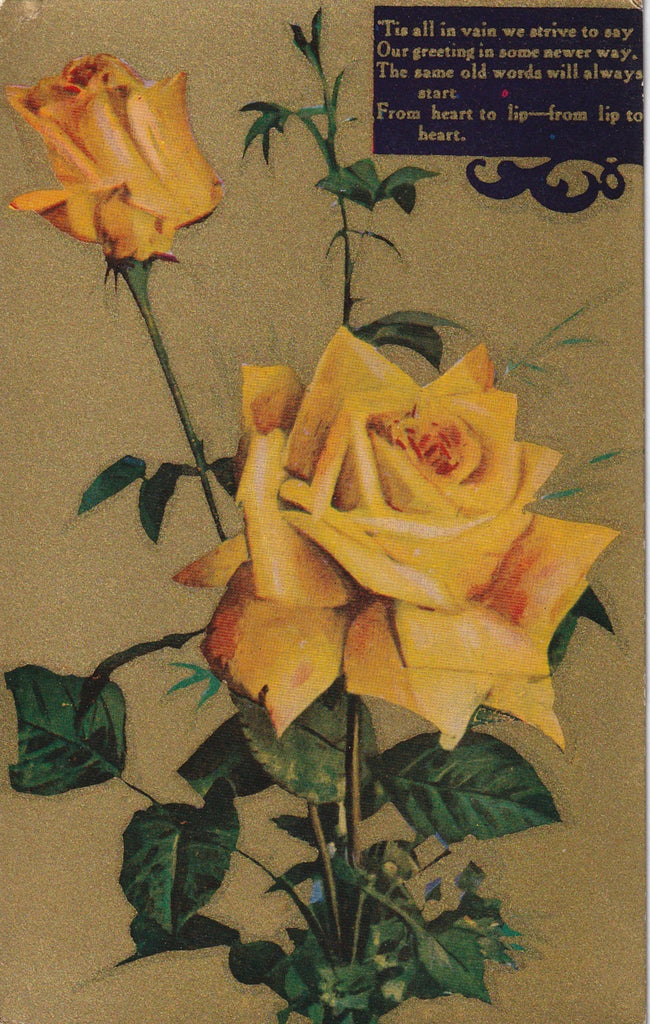Edwardian Yellow Rose Greeting Postcard