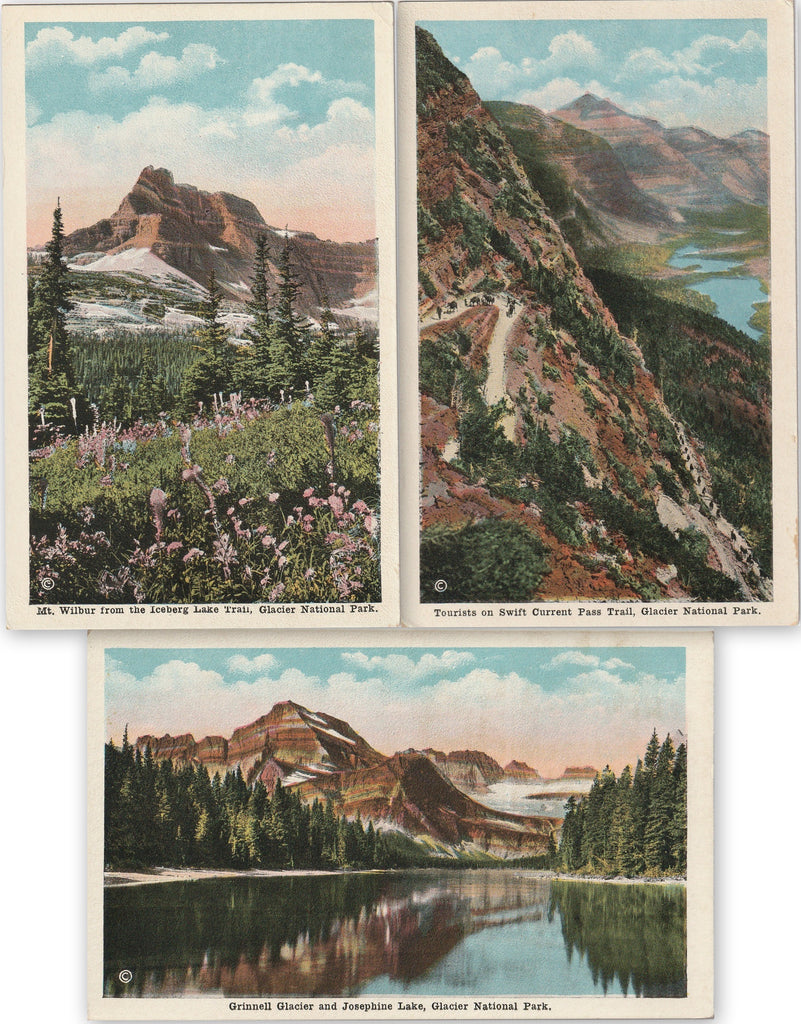 Glacier National Park Montana SET of 3 Postcards