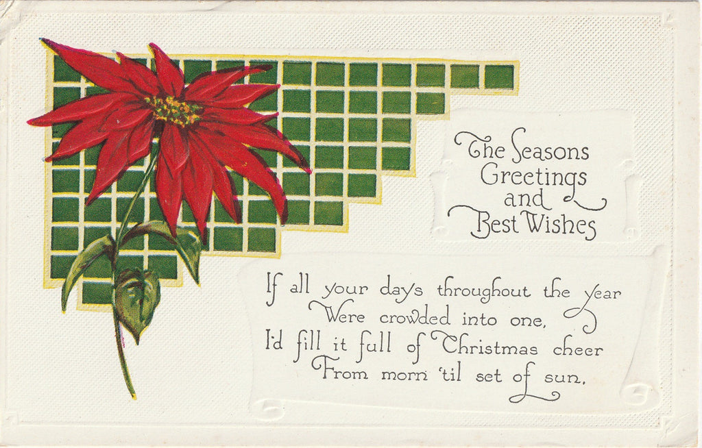 Poinsettia Postcard 1920s