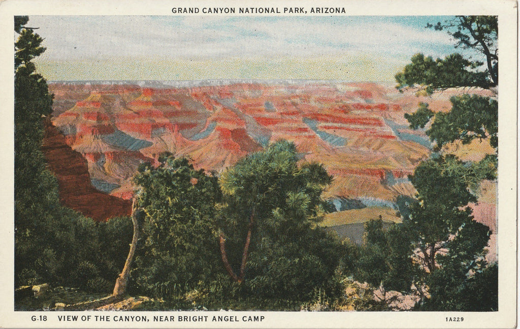 Grand Canyon Near Bright Angel Camp Arizona Postcard