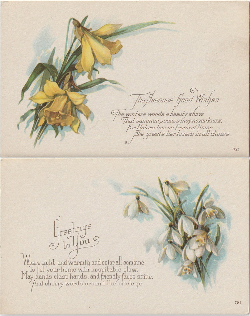 Seasons Greetings Daffodils Snowdrops Antique Postcards