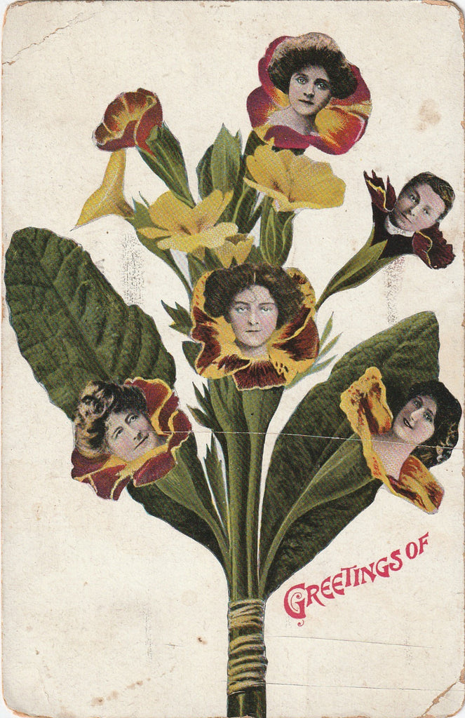 Edwardian Fantasy Pansies Antique Postcard