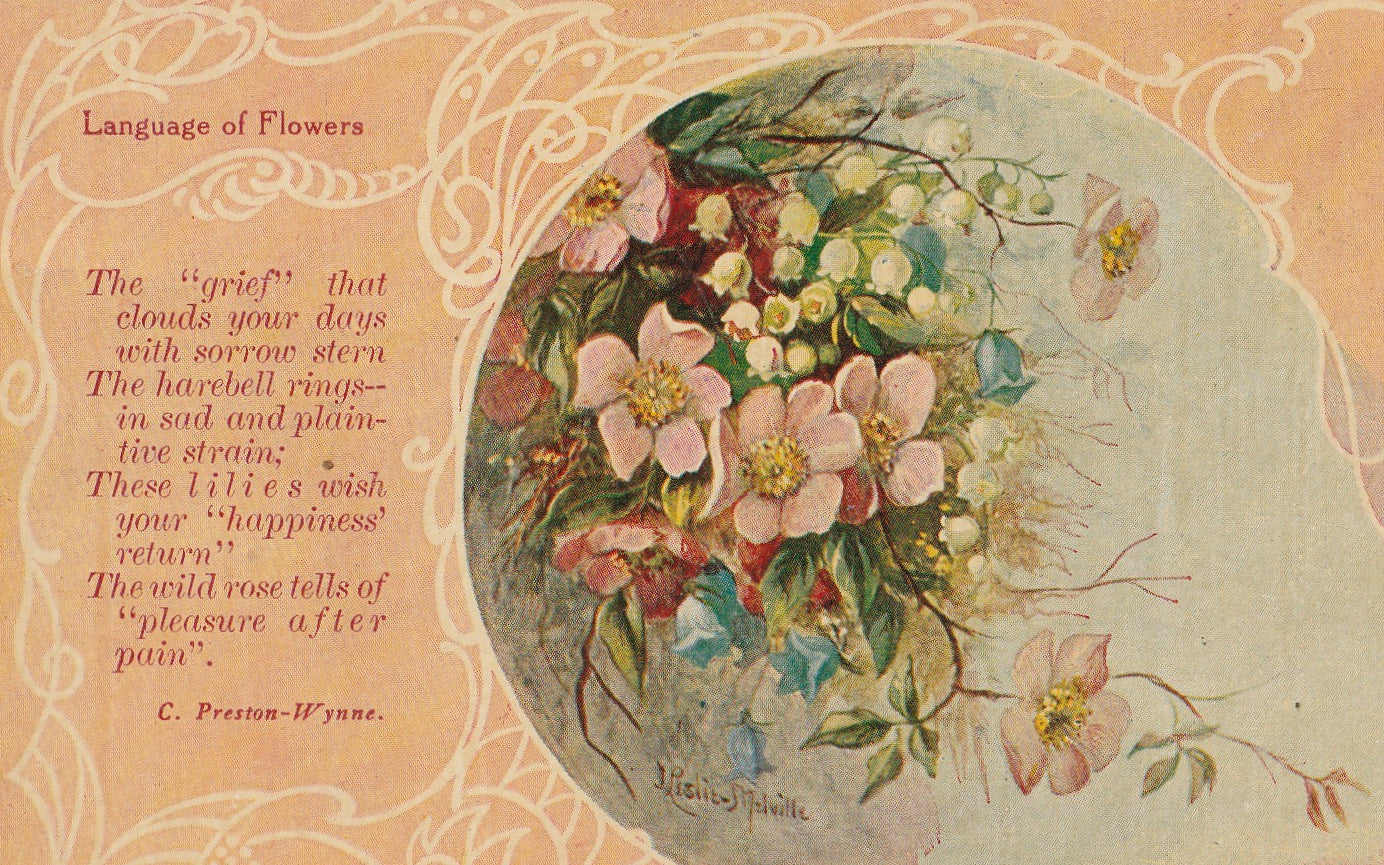 Grief That Clouds Your Days - Language of Flowers - Postcard, c  1900s
