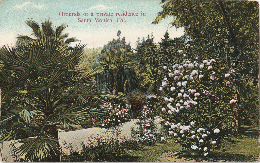 Grounds of Private Residence Santa Monica California Postcard