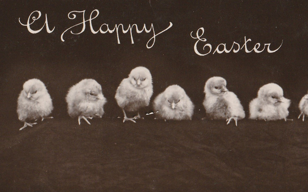 Happy Easter Chicks - Rotograph Co. - RPPC, c. 1906