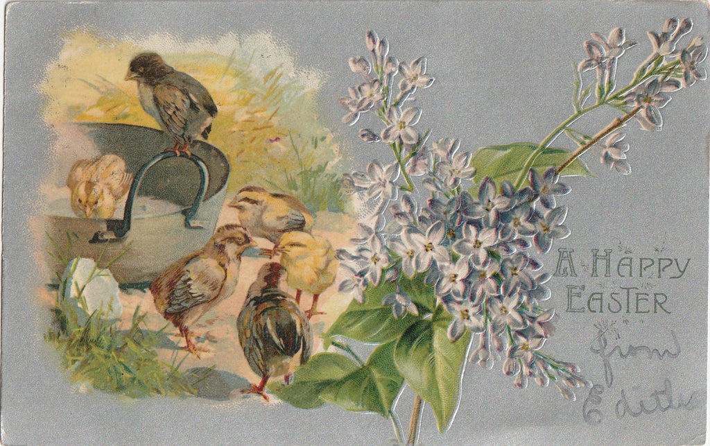 Happy Easter Chicks Antique Postcard