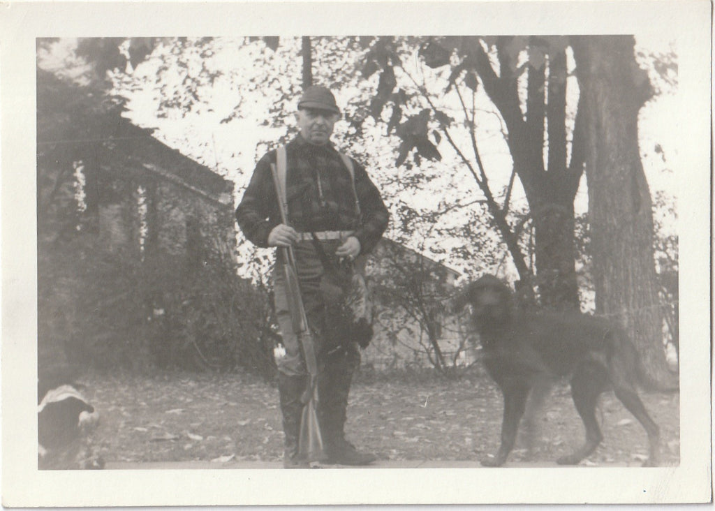 Hunting Dogs - Pheasant Hunter - 1 of 4 - Photo, c. 1950s