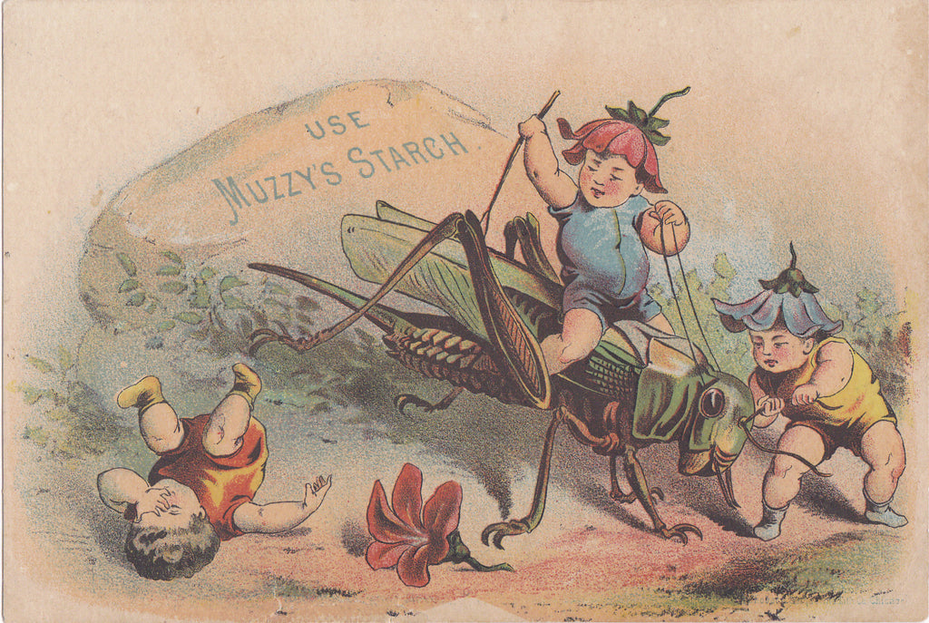 Use Muzzy's Starch- 1800s Antique Trade Card- Sprite Children Fighting Grasshopper- Flower Fairies- Victorian Fantasy- Boston, MA