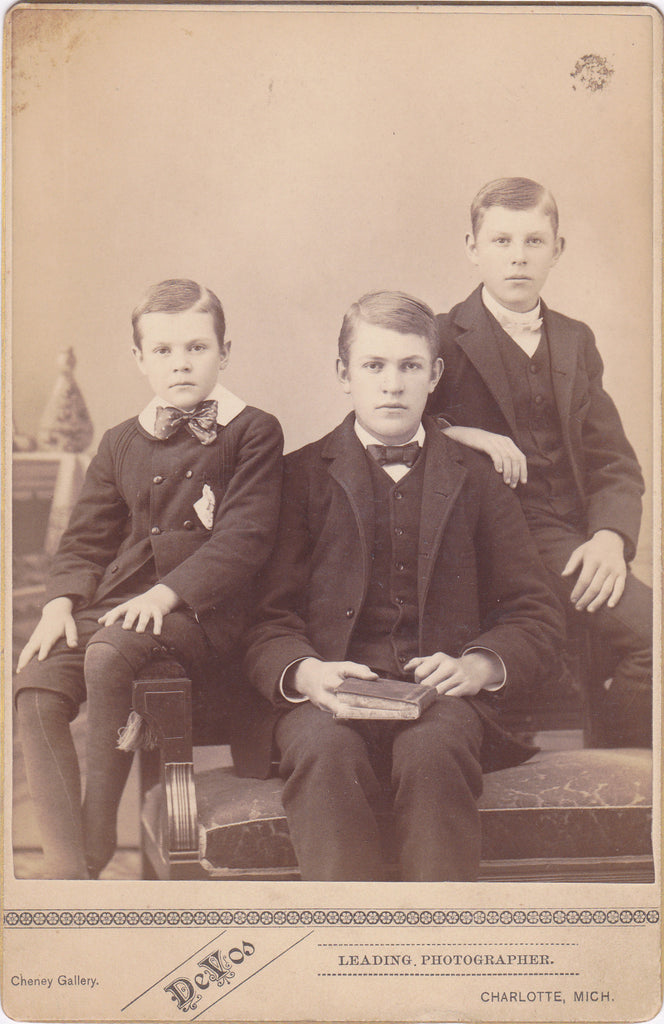 Victorian Brothers- 1800s Antique Photograph- July 1886- Boys Portrait- Charlotte, Michigan- Cabinet Photo- Reading Book