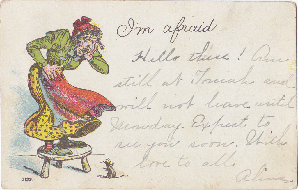 I'm Afraid- 1900s Antique Postcard- Frightened By Mouse- Screaming Woman- Edwardian Humor- Weird Art Comic- Used