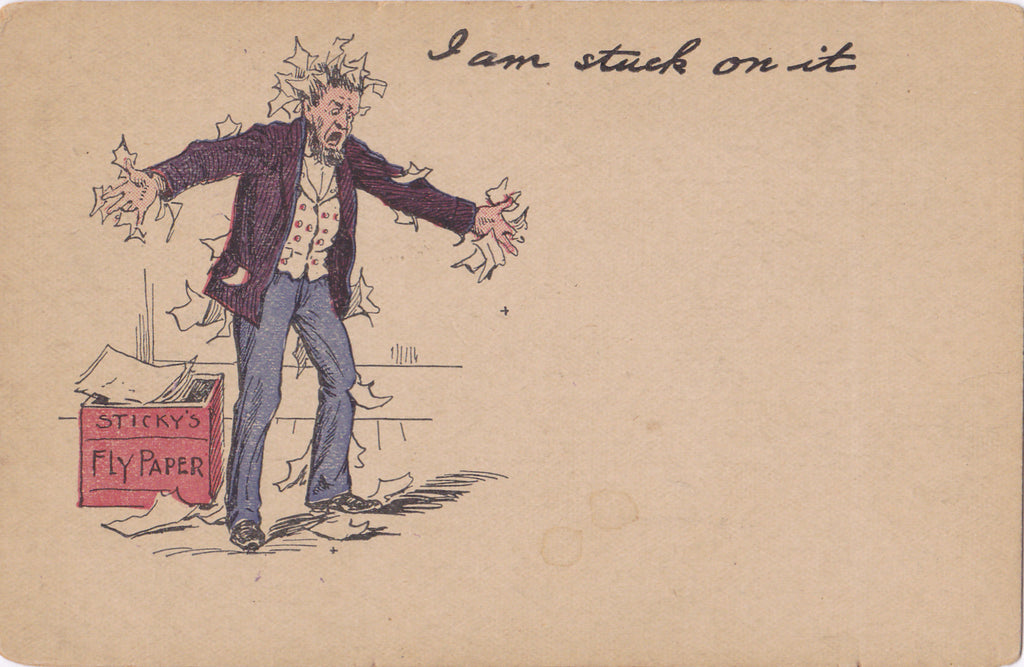 I Am Stuck On It Fly Paper Postcard